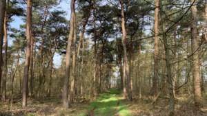 Uitfietsen: gravelen op de mountainbikeroute in Echt