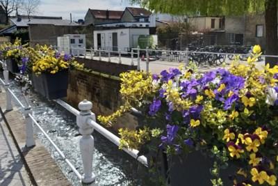 Valkenburg zoekt beste plek voor permanent openbaar toilet in centrum