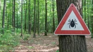 Aandacht voor de gevaren van tekenbeten tijdens week van de teek