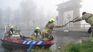Brandweer kan reeën niet meer redden uit Zuid-Willemsvaart in Weert: dieren verdronken
