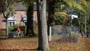 Leudal gaat overlast van bladeren op straat in kaart brengen