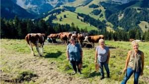 In Maastricht opgegroeide boerin Vivianne (54) wil niet meer terug vanuit de Zwitserse Alpen
