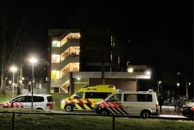 Video: Zwaargewonden bij steekpartij in asielzoekerscentrum Echt: verdachte aangehouden