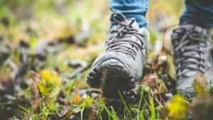 Vier wandelroutes met eigen thema in Montfort