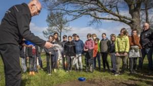 Leerlingen van basisschool de Krullevaar in Sevenum zorgen voor bloemenzee op Ut Hetje