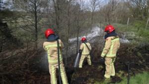 Bermbrand langs de A2 bij Weert