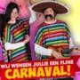 Webshop van feestartikelenwinkel de Karnevalswierts gehackt