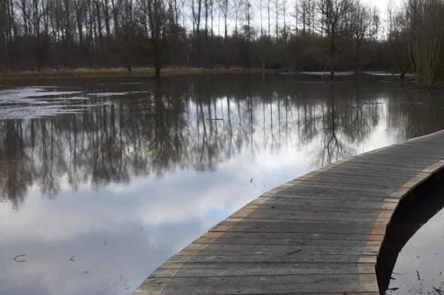 In klimaatbuffer Heijkersbroek kan de natuur zijn gang gaan