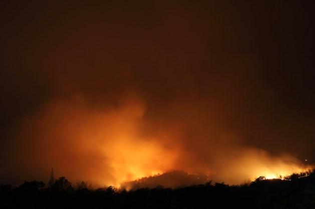 Gemeente Bergen wijst inwoners op rookverbod in bossen