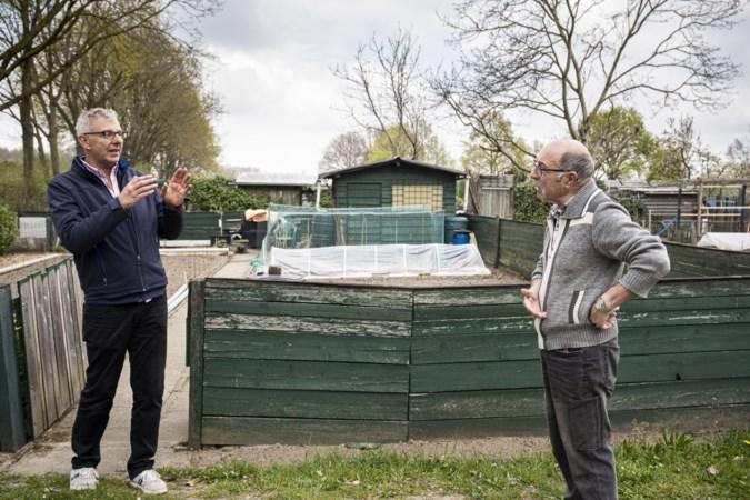 Vrees en boosheid in Haelen na inbraken in volkstuinen. Amable (79) wachtte 's nachts tot ze terugkwamen: 'ik was zó boos'