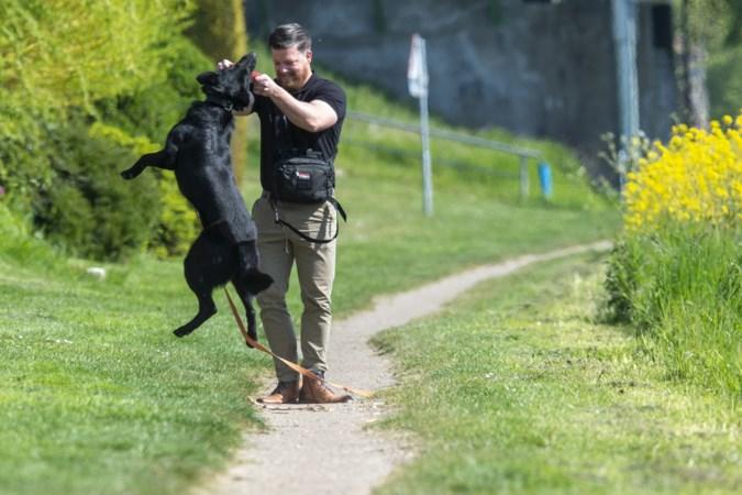 Steeds meer aandacht voor (jonge) oorlogsveteranen in Stein, hondengeleider uit Berg die in Kirgizië F-16's bewaakte draagt steentje bij