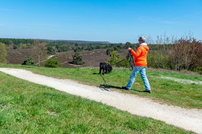 Stichting Hart Limburg Zuid vindt honderden vermiste huisdieren per jaar terug