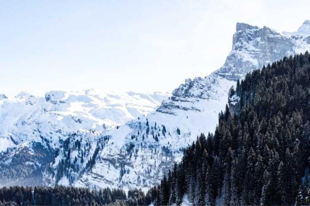 Zeker vijf wintersporters omgekomen na lawine in Alpen