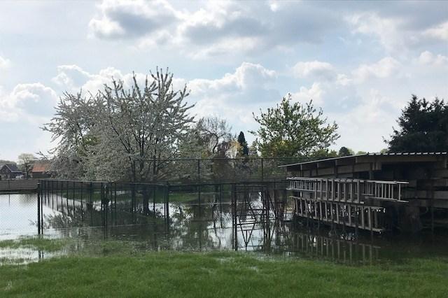 'Niet urgent' waterlek zorgt voor schade in Nederweert-Eind: 'Binnen 48 uur 7000 vierkante meter onder water'