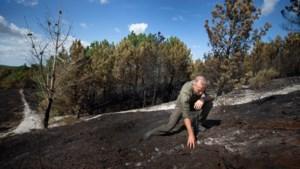 Brandweer in actie op Brunssummerheide, deel natuurgebied afgebrand