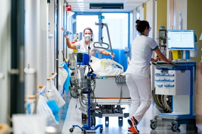 Lichte daling aantal opgenomen coronapatiënten in ziekenhuizen, 7830 nieuwe coronagevallen