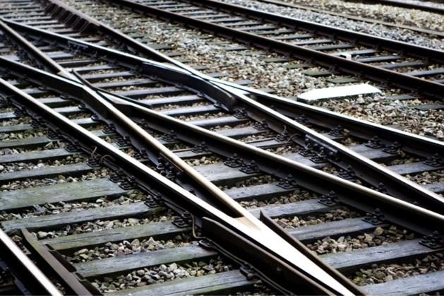 Boom op het spoor: minder treinen tussen Tegelen en Reuver