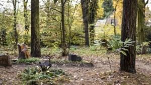 Gestolen 'koperwerk' van Natuurbegraafplaats St. Odiliënberg blijkt zink te zijn: 'Dommer dan dom'