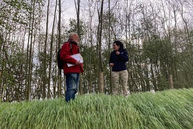Werkgroep Flora van Natuurbehoud Cadier Keer weer van start