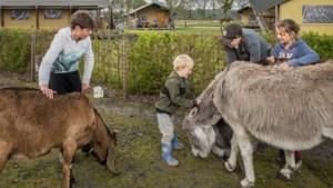 'Nederlanders willen ook dit jaar op vakantie in eigen land'
