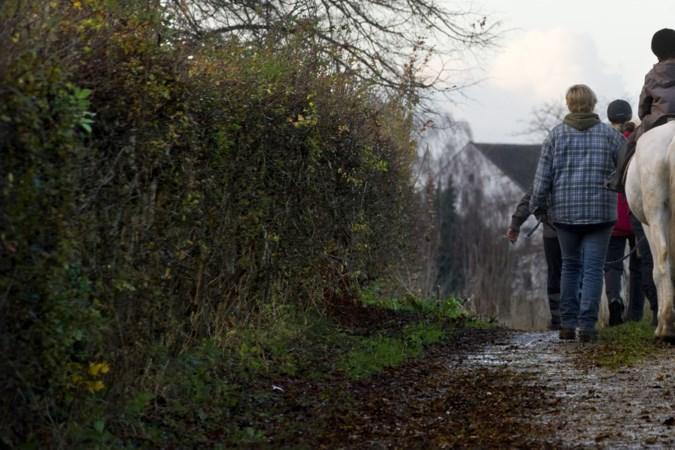 Maneges moeten paardenmest opruimen in Beekdaelen