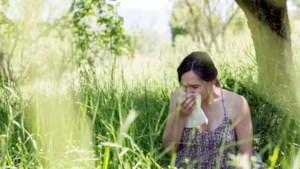 Kans op hooikoorts neemt toe door warmer weer