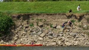Kajakkers herenigen van steile oever gevallen hond met baasjes