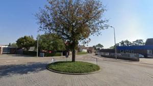Alle 16.142 bomen in Maasgouw gedocumenteerd maar wat moet je ermee?