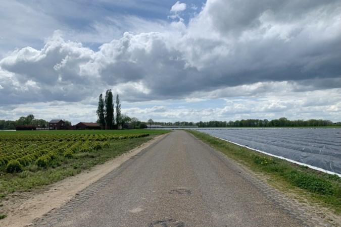 Druk in het Heuvelland? In Midden-Limburg is het heerlijk rustig en landelijk fietsen