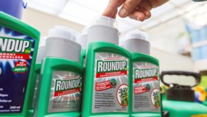Boer en onkruidhater zijn er blij mee, maar onkruidverdelger Roundup is ook zeer omstreden