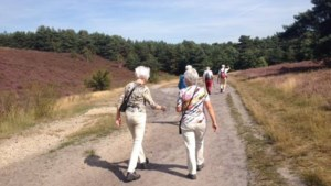 Milieunetwerk Beekdaelen en Brunssum heft zichzelf op