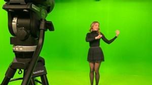 Limburgse Fauve (25) is muziektolk bij Eurovisie Songfestival: 'Deze klus is een droom'