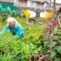 Leo de Groot van Dobbeltuin Heerlen: 'De tuin is gebaseerd op natuurlijke ecosystemen'