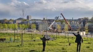 'Geïsoleerd eiland' Wyckerpoort-Noord ligt ideaal in Maastricht, maar lijkt vergeten