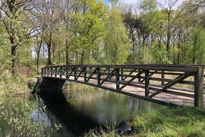 Uitwandelen: struinen langs Meijel, Grashoek en Helenaveen door een bijzonder stukje Nederland