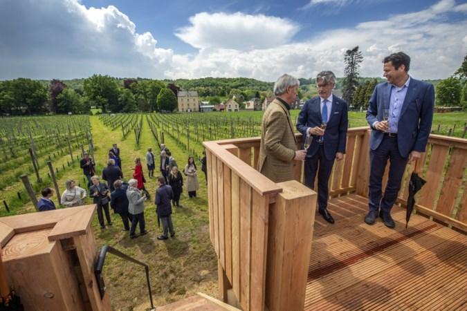 Château Sint-Gerlach serveert wijn uit eigen gaard: 'Die flessen hoeven we niet meer uit Frankrijk of Italië te halen'