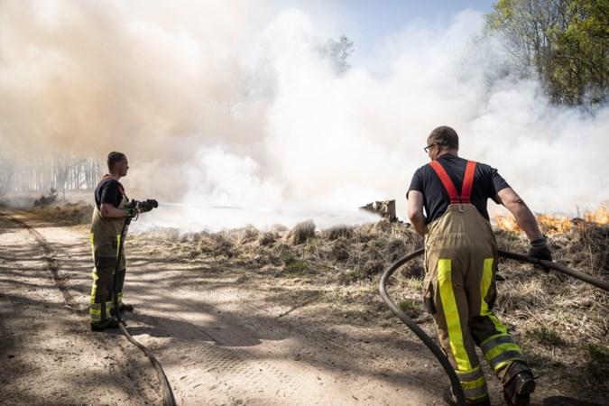 Onderzoek na branden in Meinweg en Deurnese Peel: corona was een geluk bij een ongeluk