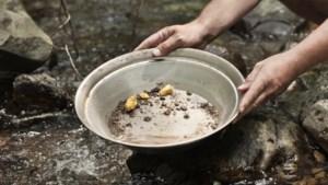 Dorpsjeugd Castenray in de greep van goudkoorts