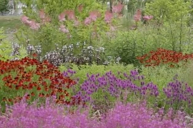 Trailer IBA-tentoonstelling 'Landscape Works with Piet Oudolf & LOLA'