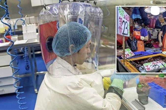 Toch twijfels: kwam het coronavirus uit een laboratorium in Wuhan?