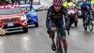 Rozetruidrager Bernal niet te stuiten in ingekorte bergrit Giro