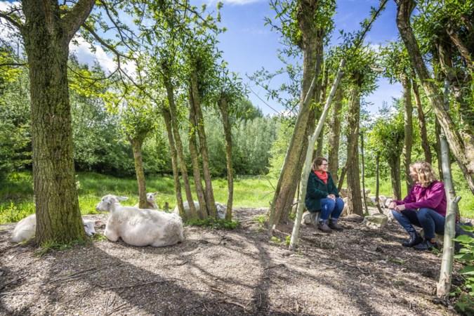 De 'Dames van het Blakterbeekpark' in Sevenum willen de jeugd prikkelen om te spelen in de natuur