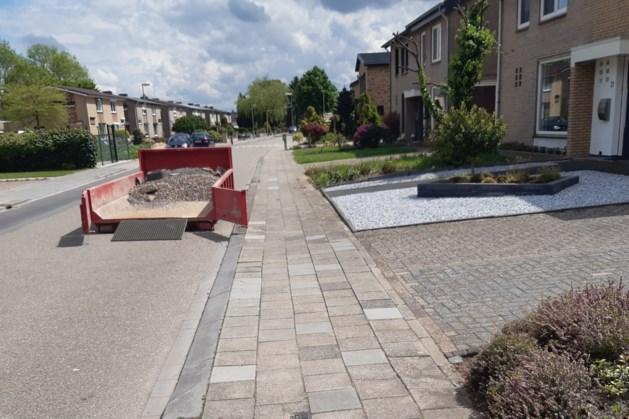 Gratis planten voor inwoners Sevenum, Kronenberg en Evertsoord die steen vervangen door groen