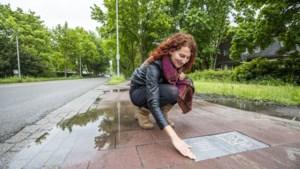 Ontmoet Lisabet, Beer, Vitalis en Martin: ze zitten allemaal 'op de grens' bij de Kaldenkerkerweg in Venlo