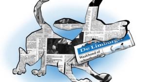 De krant: in 175 jaar van schoothondje tot waakhond van de democratie