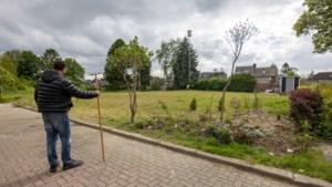 Na een jaar bestaat de beloofde stadsoase in Heilust uit woekerend onkruid en bouwpuin