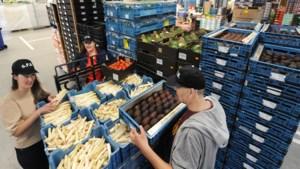 Brigade behoedt groente en fruit van doordraaien en bevoorraadt Limburgse voedselbanken: 'Het is zeker geen afval'