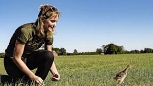 Vier podcasts voor een uurtje wandelen in de Nederlandse natuur: toerist in eigen omgeving