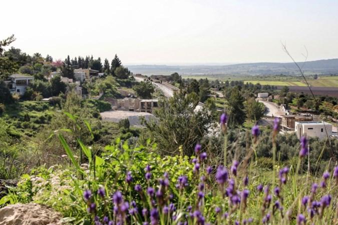 Geweld splijt oase van vrede: is vreedzaam samenleven tussen Joden en Arabieren eigenlijk wel mogelijk?