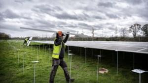 Stein geeft voorkeurslocaties aan voor zonneweiden, Steinerbos wordt ontzien